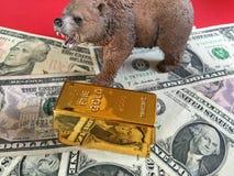 Borsukowaty złocisty rynek Fotografia Royalty Free