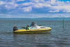 Borta fiske fotografering för bildbyråer