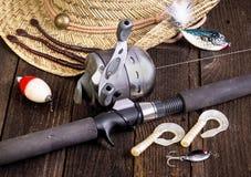 Borta fiske royaltyfria bilder