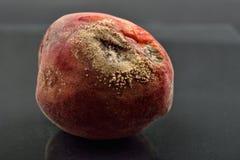 Bortskämd och möglig persika på den gamla mörka reflekterande tabellen som är sjuklig Arkivfoton