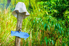 Borttappad hatt på den gamla stammen Royaltyfri Foto