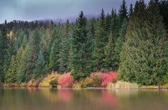 Borttappad lake Arkivfoto