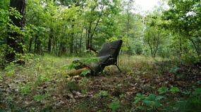 Borttappad stol i skogen arkivbild