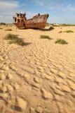 Borttappat Aral hav Arkivbilder