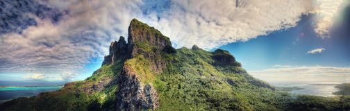 bory francuski Polynesia Obraz Royalty Free