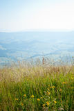 Borzhava  (Carpathian mountains, Ukraine). Royalty Free Stock Images