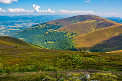 Borzhava ridge in Carpathian mountains in august. Classic late summer travel background in Carpathian alps. Wonderful evening weather with blue sky and some Royalty Free Stock Photos