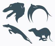 Borzoi dog. Vector illustration of borzoi dog Royalty Free Stock Images