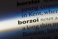 Borzoi. Word in a dictionary.  concept Royalty Free Stock Images