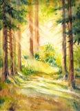In bos stock illustratie