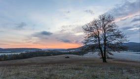 Bos - berg bij de tijdspanne van de zonsondergangtijd stock footage