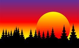 Bos bij zonsondergang stock illustratie