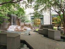 Bos binnen een Stad Royalty-vrije Stock Afbeelding