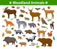 Bos bosdiereninzameling royalty-vrije illustratie