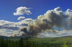 Bos Brand in Heuvels in Binnenlands Alaska Royalty-vrije Stock Fotografie