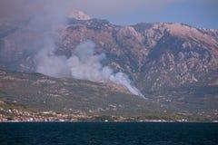 Bos brand in Montenegro stock afbeelding