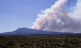 Bos brand in Utah Royalty-vrije Stock Afbeelding
