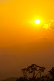 Bos de bergenaard van de zonsondergang. Royalty-vrije Stock Fotografie