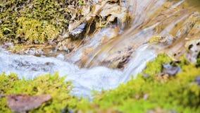 Bos de cascadestroom van de close-upwinter die door groen en van angst verstijfd mos wordt omringd Hoge minerale inhoud in bergwa stock footage
