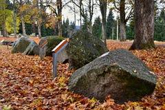 Bos in de herfst - stenenexpositie Royalty-vrije Stock Afbeeldingen