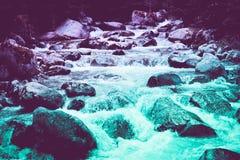 Bos de rivierstromen van de pijnboomboom door de rotsen Mooie powerf Royalty-vrije Stock Afbeelding
