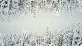 Bos in de sneeuw als 2 werelden Het schermspaarder FINLAND voor titels stock footage