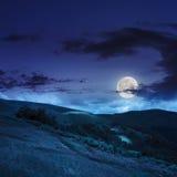 Bos dichtbij vallei in bergen op helling bij nacht Royalty-vrije Stock Afbeelding