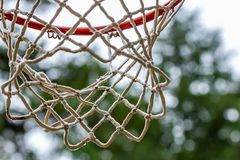 bos die met rode basketbalhoepel plaatsen op donkere dag royalty-vrije stock afbeelding