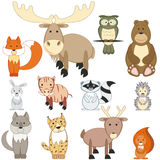 Bos dieren Royalty-vrije Stock Afbeeldingen