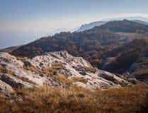 Bos en Berg stock foto's