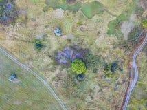 Bos en gebied met een sleep luchtfotografie Royalty-vrije Stock Afbeeldingen