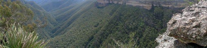 Bos en heuvels in Australië Stock Foto's