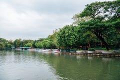 Bos en meer, Dusit-Dierentuin in Bangkok, Thailand royalty-vrije stock afbeeldingen