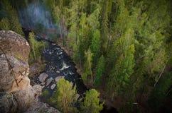 Bos en rivier met rotsen Stock Foto's