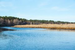 Bos en rivierlandschap royalty-vrije stock foto's