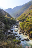 Bos en rivierlandschap van Langtang-vallei in Nepal Stock Foto's