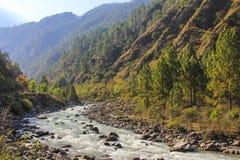 Bos en rivierlandschap van Langtang-vallei in Nepal Royalty-vrije Stock Foto's