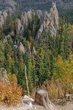 Bos en rotsenlandschap in Custer Park stock afbeelding