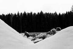 Bos en sneeuw en stenenstapel in zwart-wit Stock Afbeeldingen