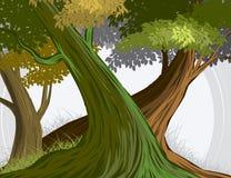 Bos en van de bomenscène vectoraardachtergrond Stock Afbeeldingen