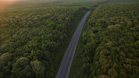 Bos en weg uit dron bij zonsopgang wordt verwijderd die stock afbeeldingen