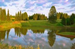 Bos en wolken bij zonsondergang royalty-vrije stock afbeeldingen