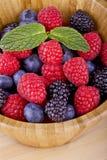 Bos fruit-bessen royalty-vrije stock afbeeldingen