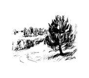 Bos, illustratie Stock Afbeeldingen