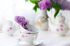 Bos lilac bloemen in een kom Royalty-vrije Stock Foto's