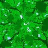 Bos luifel - de zomer Royalty-vrije Stock Foto