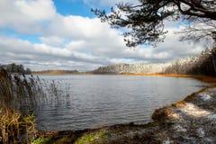 Bos meer Royalty-vrije Stock Foto's