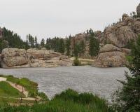 Bos- Meer, het Park van de Staat Custer stock foto