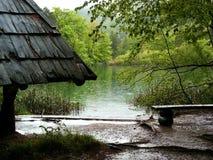 Bos meren stock foto