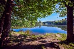 Bos met rivier en hemel Stock Afbeeldingen